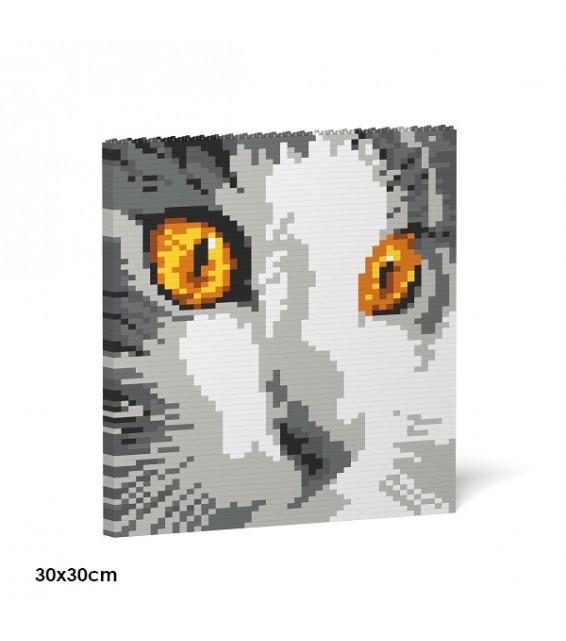 Cat Eyes Brick Painting 03S